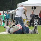 Paard & Erfgoed 2 sept. 2012 (11 van 139)