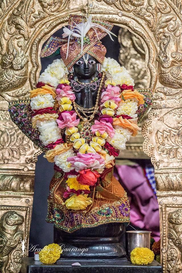 ISKCON Mayapur Deity Darshan 02 Feb 2016 (8)