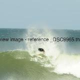 _DSC9965.thumb.jpg