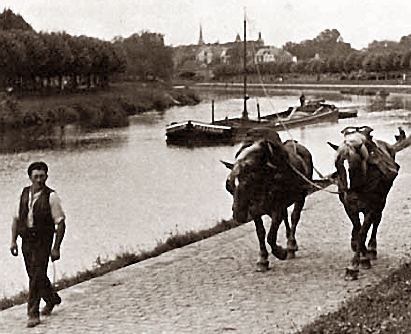 horse-drawn-boats-6