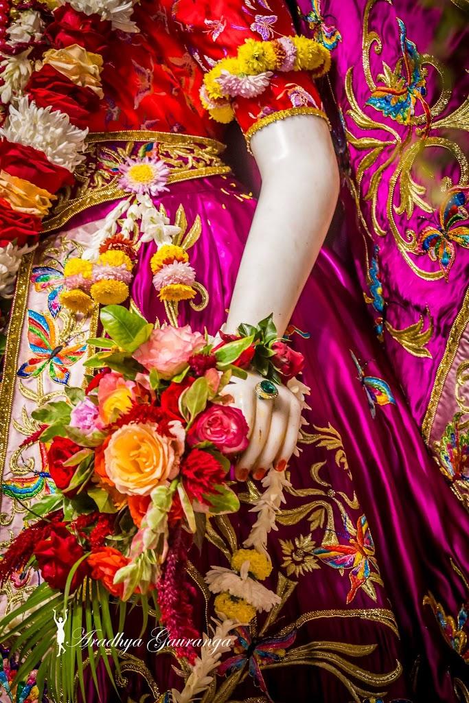 ISKCON Mayapur Deity Darshan 11 Jan 2017 (17)