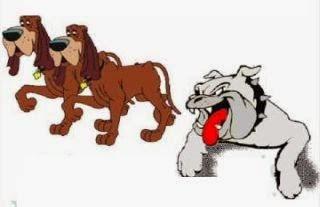 El perro de pelea y los perros sencillos