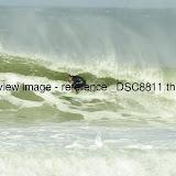 _DSC8811.thumb.jpg