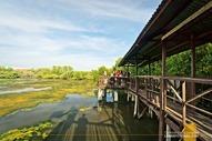 ZSCMST Bird Sanctuary Zamboanga