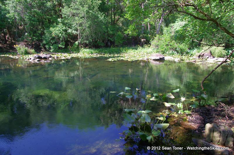 04-04-12 Hillsborough River State Park - IMGP9686.JPG