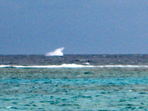 c81115a2-2012-09-7-00-04-2012-09-7-00-04.jpg
