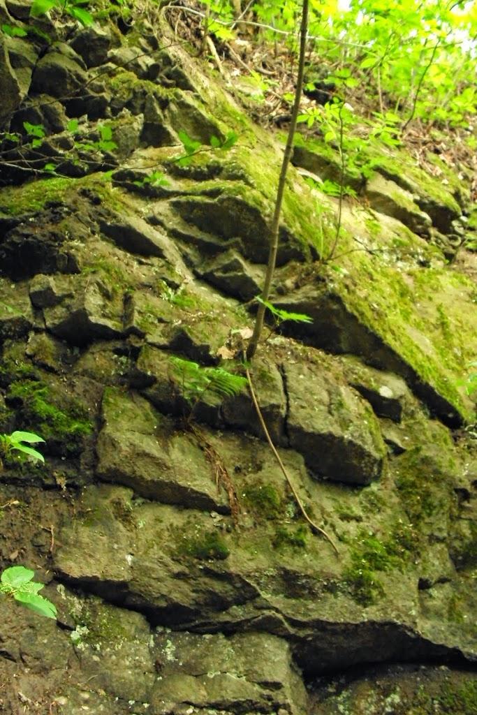 Badania w Kamiennej Górze - DSC02152.JPG