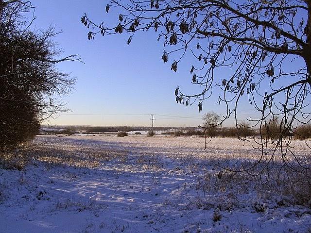 Woodhurst In The Snow - 4795498510233_0_BG.jpg