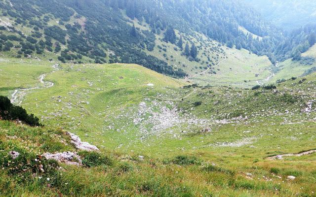 Abstieg vom Türle Daumen zu den Niggenalpen im Nickental Hinterstein Allgäu