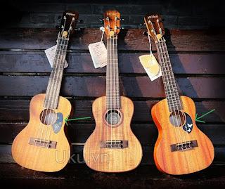 miếng dán chống xước ukulele
