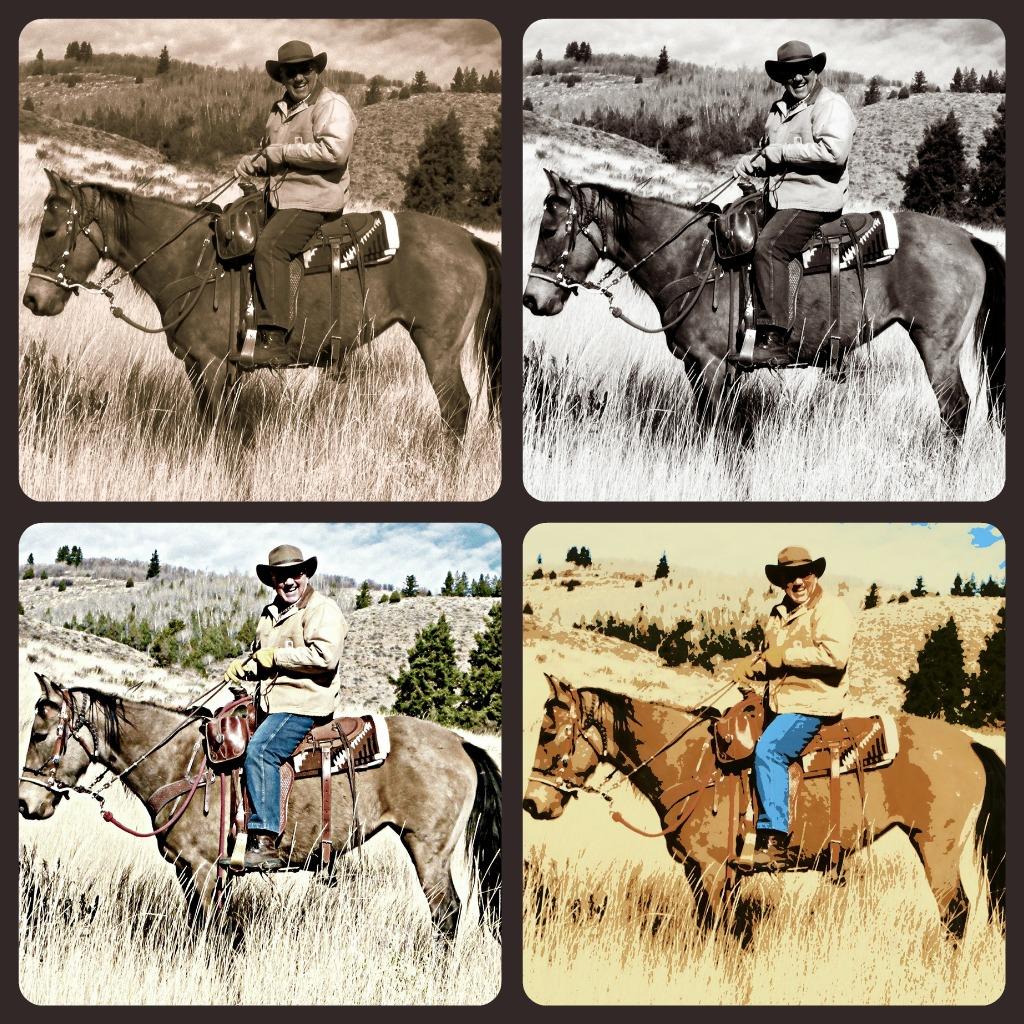 Best   Wallpaper Horse Collage - Picnik+collage+jewel  HD_355749.jpg