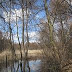 Река Усманка весенний паводок 013.jpg