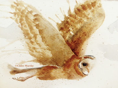Owl painting watercolour