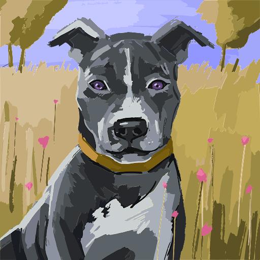 Francesco_a_cs