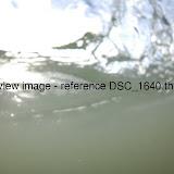 DSC_1640.thumb.jpg