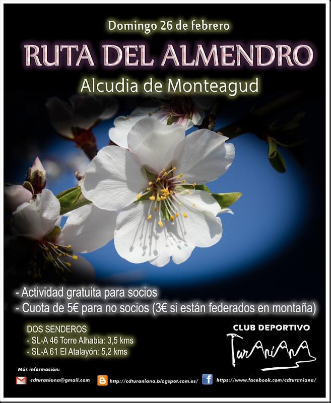 Cartel Ruta del Almendro Alcudia
