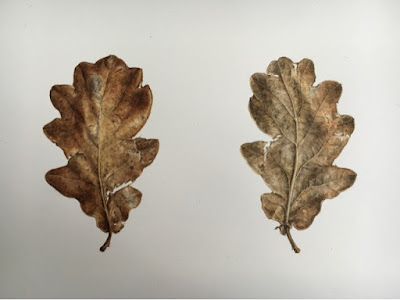Oak leaf painting using winsor and newton brush