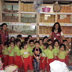 Field Trip to Supermarket by Jr KG Section ( 2016-17 ) at Witty World, Bangur Nagar