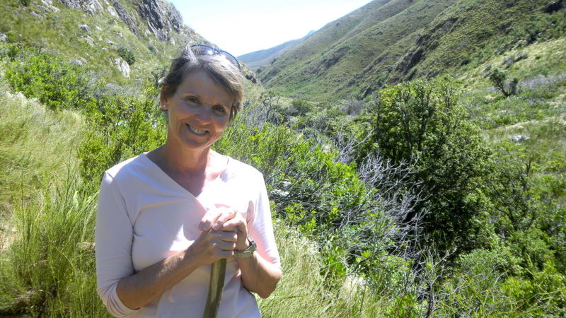 Hiking in Jonkershoek Nature Reserve