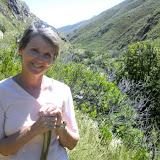 Hiking in Jonkershoek Nature Reserve