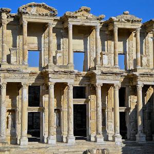 The Library - Turkey Oil.jpg