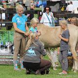 Paard & Erfgoed 2 sept. 2012 (94 van 139)