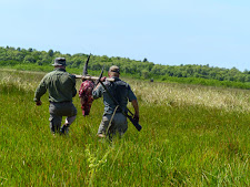 Successful hunters returning with their trophy across the floodplains.  Note the buffalo in the forground watching from a distance.
