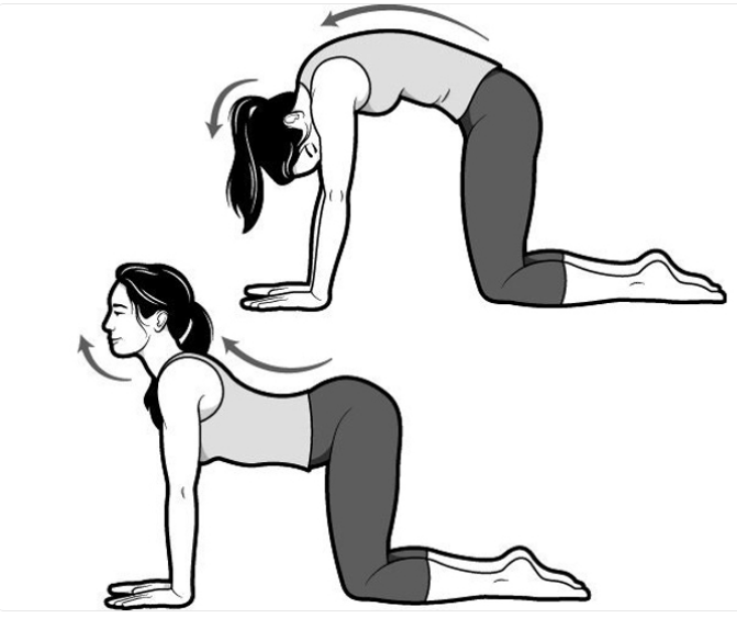 Doesn't sleep come from a busy routine and stress? Do these 10 yogasanas every day and get a good night's sleep