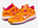"Nike LeBron 9 Low - ""Miami Floridians"" LE"