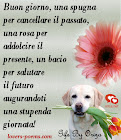 frasi-buongiorno-amore-002.jpg