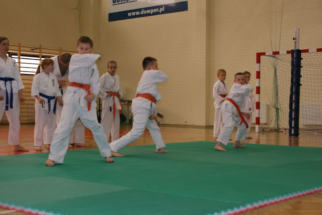 DO 2011 Pokaz karate - DSC00088_1.JPG