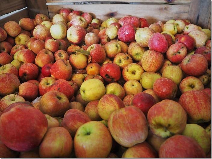 manzanas3
