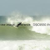 _DSC9550.thumb.jpg