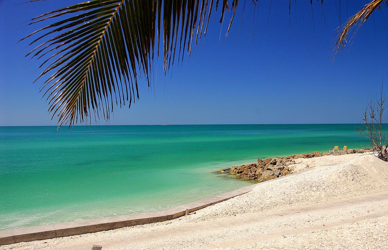Siesta Key Sarasota Beach Rentals