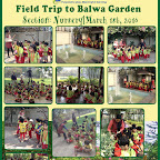 Field Trip to Balwa Garden by Witty World, BN , Nursery Section [ 2015 - 16 ]