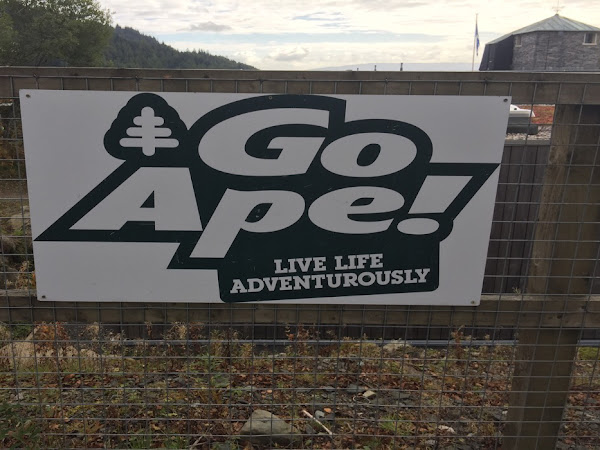 Treetop Adventure at Go Ape*