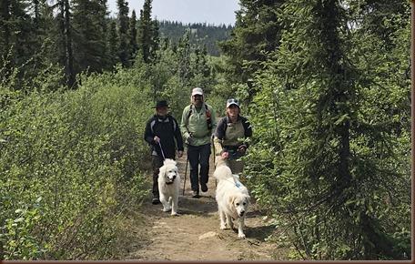 Fairbanks AK136-9 Jun 2018