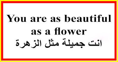You are as beautiful as a flower انت جميلة مثل الزهرة