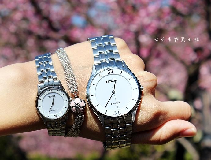 13 星辰 CITIZEN AR0070-51A EG3220-58A 對錶