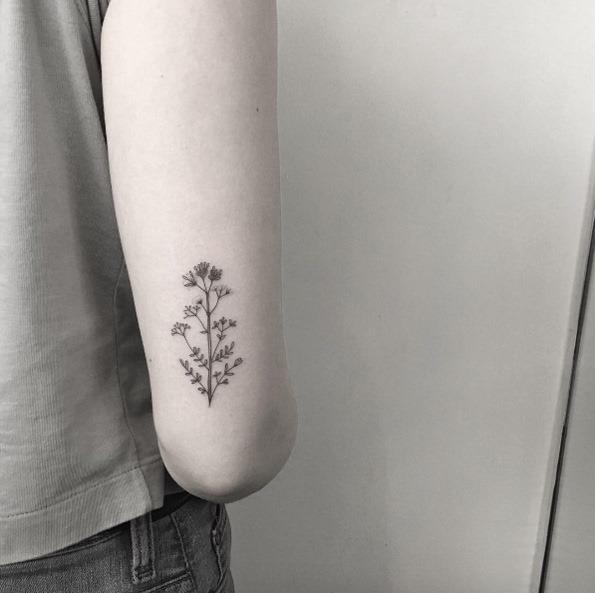 este_pequeno_de_flores_silvestres