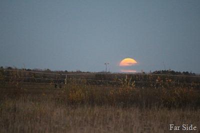 Moon peeking out