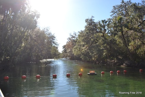 Blue Spring - home to manatees