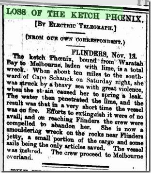 Phoenix fire 1876