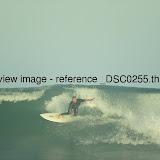_DSC0255.thumb.jpg