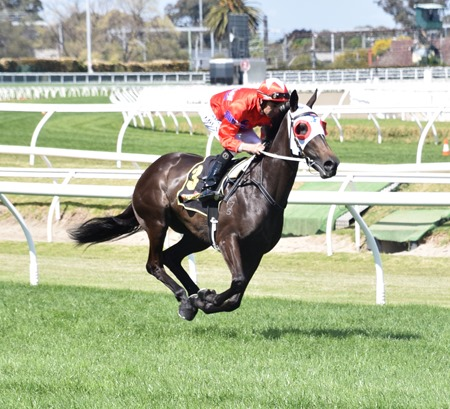 thousand guineas_seabrook 2