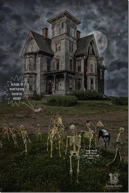 House of Hauntings Digital Background 10