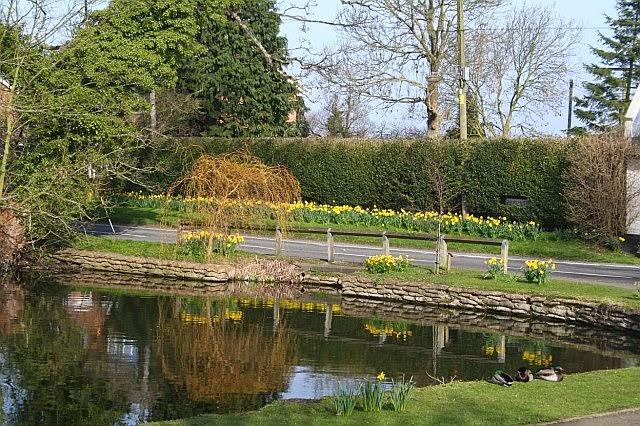 Woodhurst Pictures - Spring 2007 - 6375319510233_0_BG.jpg