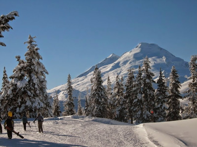 Mt. Baker Ski Area is located in Bellingham, Washington, with 38 ski trails, served by 8 lifts.Credit: Peter James