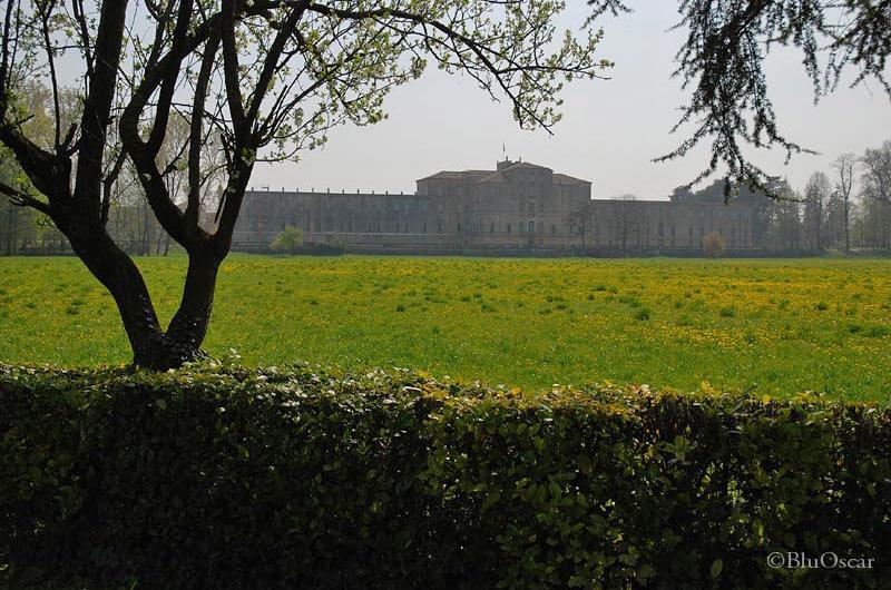 Villa Contarini 10