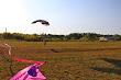 32-PARACHUTISME CHAMPIONNAT EUROPE BOSNIE 2013 - FREE STYLE atterrissage avant résultats (C)FAI